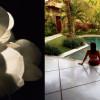 Ahimsa Bali